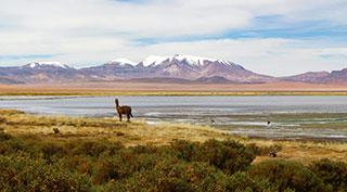 Chili et île de Pâques, terres d'exception